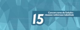 Cancers rares de l'adulte : 15 réseaux nationaux labellisés