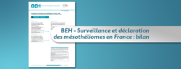 BEH - Surveillance et déclaration des mésothéliomes en France : bilan